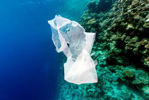 Ecoalf estudia reciclar plástico del mar para producir ropa de alta gama