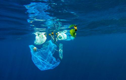 #BreakFreeFromPlastic, por un futuro libre de contaminación por plásticos