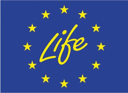 38 proyectos LIFE nuevos en España