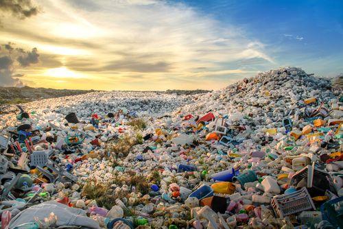 ¿Quién es el máximo responsable del littering?