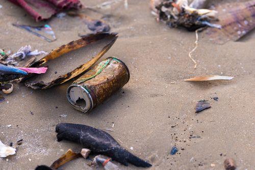 Campaña ciudadana para retirar residuos en 47 playas de 21 provincias españolas
